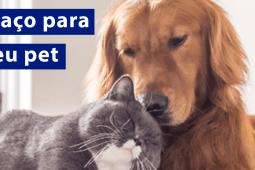 Como montar um espaço para o seu animal de estimação